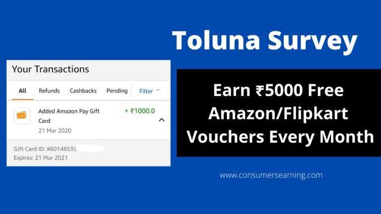 toluna survey
